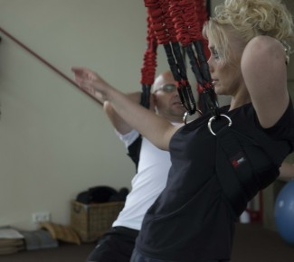 Rug training